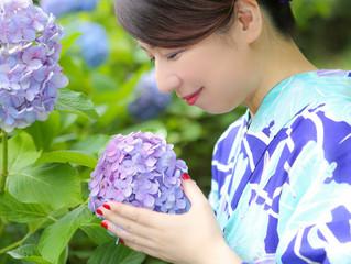 雨の日☂と紫陽花✿特集