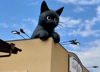 黒猫かわいい♡ケーキ屋さん