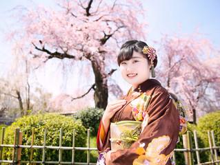 桜の時期の成人式ロケ撮影