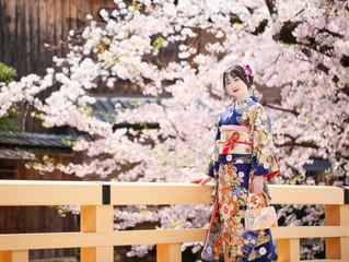 桜咲くお着物撮影♪❀*
