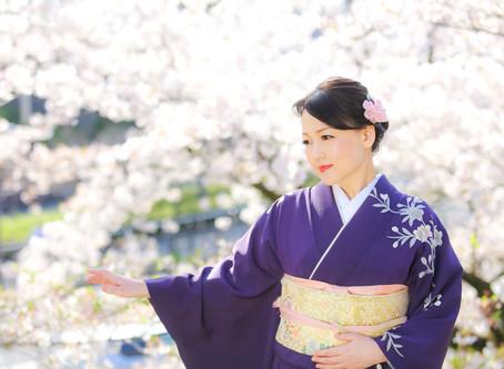 桜の訪問着で❀