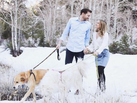 Mt. Charleston Engagement Session | Snow & Fur Babies