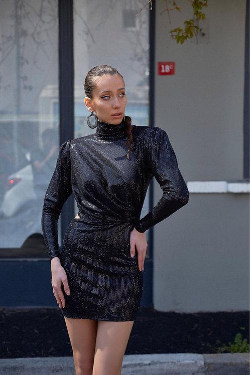 Coupe Dark Dress