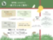 新サービスチラシ.001.jpeg