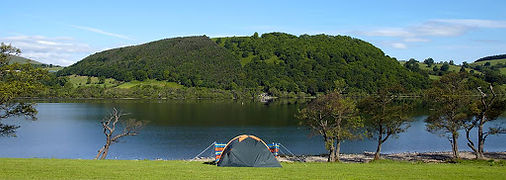 Campsite Camping for Beginners
