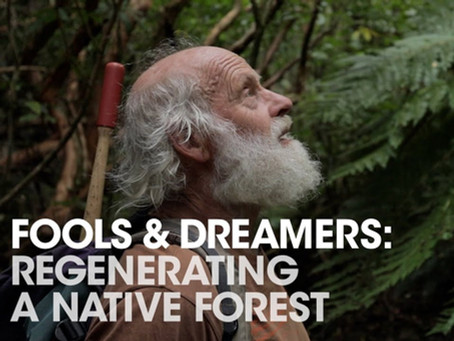 Free 30 minute film! Fools & Dreamers: Regenerating a native forest