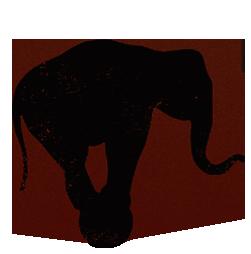 Elephant 1.png
