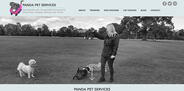 Panda ScreenShot.png