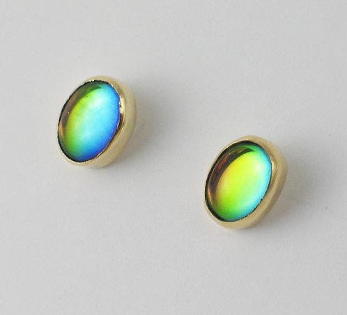 9ct Yellow Gold Stud Earrings