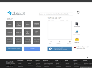 blueSoft ERP.png
