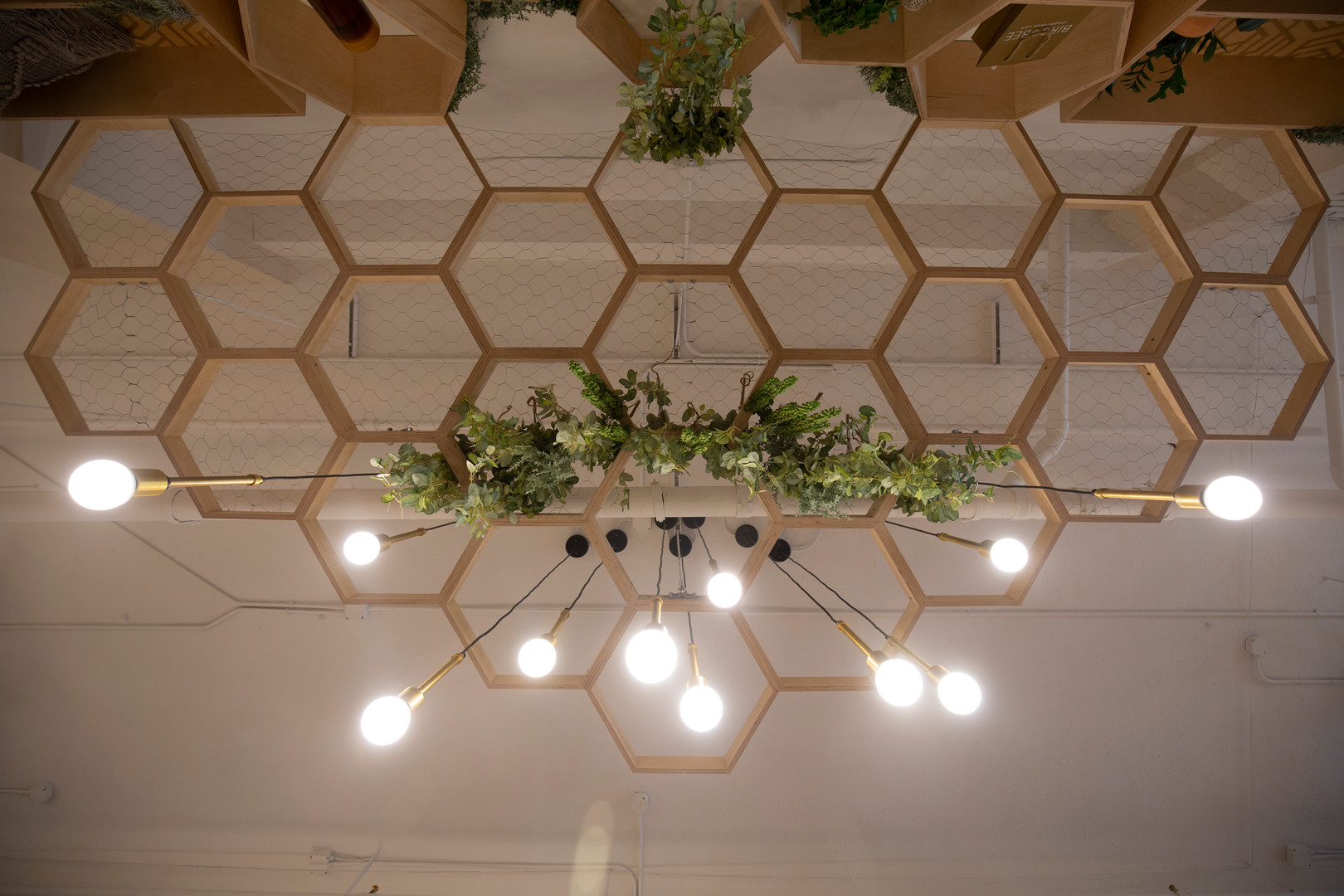 Bird Bee Detroit Installation