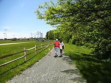 school trail near diner 2 - rev.jpg