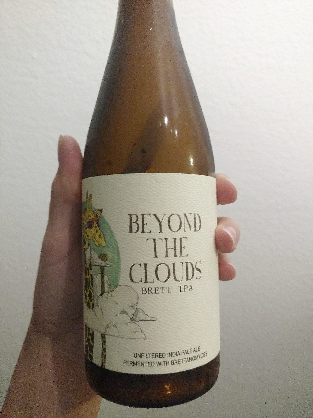 Beyond the Clouds Brett IPA