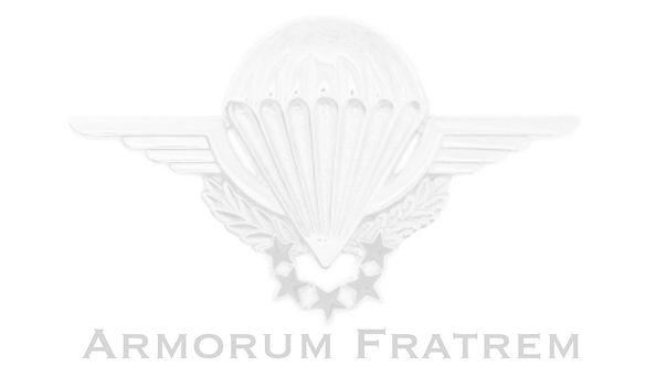 Armourum%20Fratrem_edited.jpg