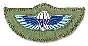 SAS wings.jpeg