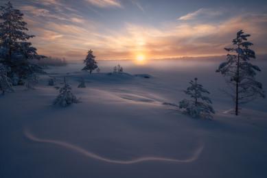 Winter's Last Breaths