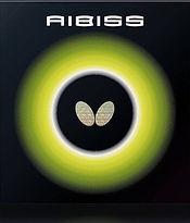 AIBISS.jpg
