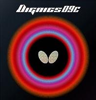 DIGNICS 09C.jpg