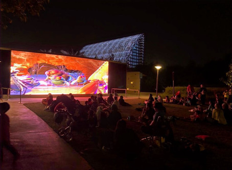 Alfresco movies at Umm Al Emarat Park are back!