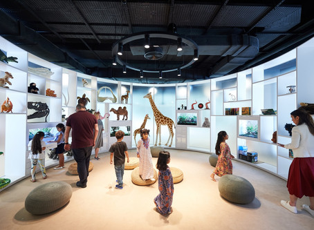 A first look at the new Abu Dhabi children's library and Theatre opening in September!