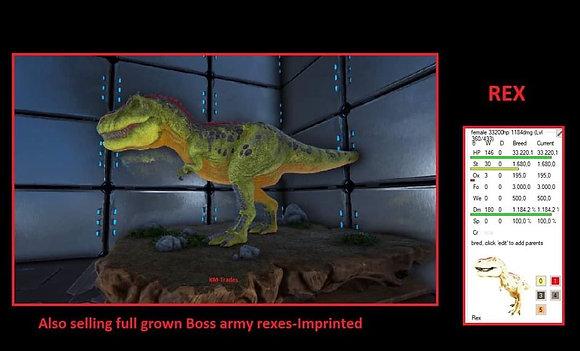 Boss rex ( official xbox smalltribes )