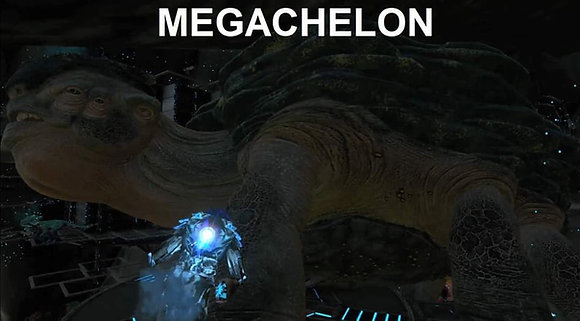 Megachelon ( xbox pvp smalltribes )
