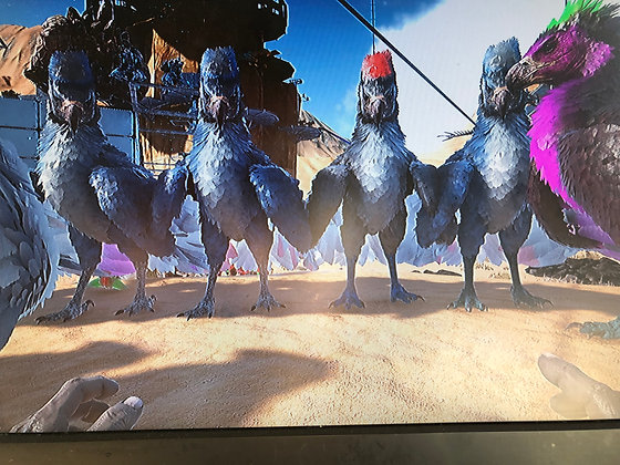 Argentavis (Official Xbox PvP)