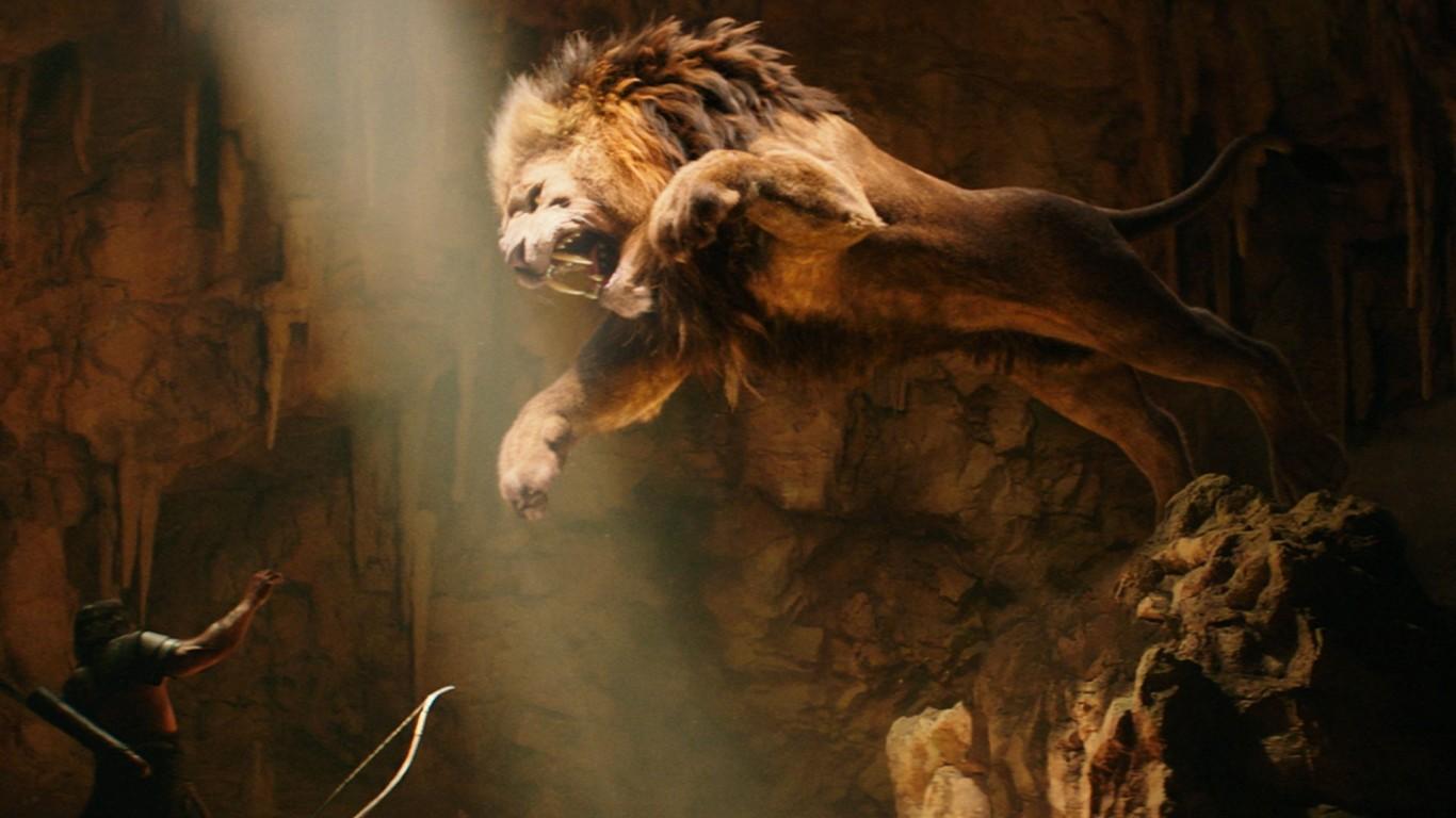 hd-lions-wallpaper-7