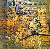 Bird Story II.jpg