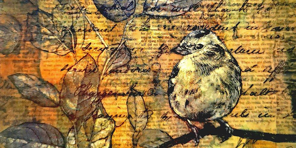 Bird Story | Online