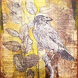 Bird_Story.jpg