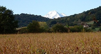 Mountain view over wheat fields, South West France