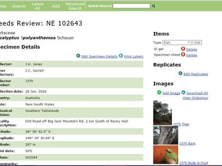 Actual sites and websites: Happy herbarium records