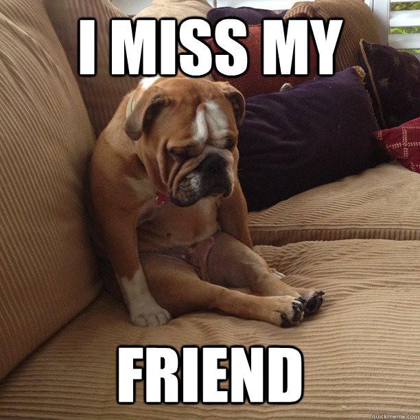 I miss my friend https://www.google.ca/url?sa=i&rct=j&q=&esrc=s&source=images&cd=&cad=rja&uact=8&ved=0ahUKEwih34PG5YvVAhUU22MKHQpWC30QjRwIBw&url=http%3A%2F%2Fwww.quickmeme.com%2Fmeme%2F3s3mgy&psig=AFQjCNEU3swsn3LLbC84vXR7e1fAsmvm0g&ust=1500224350030277