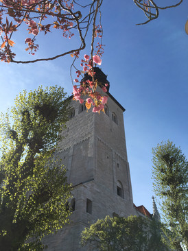 Sankta Maria domkyrka i Visby