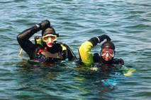 Dyk på Gotland