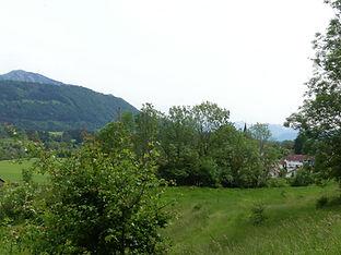 Martinszell