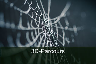 3D-Bogenparcours Sexau