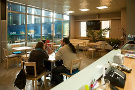 Restauracja Merliniego 2, Warszawianka