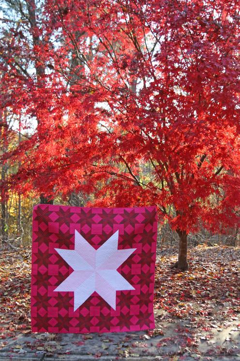 27 Inverted Pink Star by Sylvia Schaefer