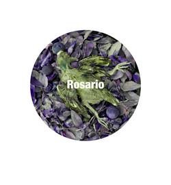 Rosario300.jpg