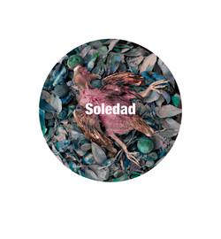 Soledad300.jpg