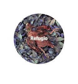 Refugio300.jpg