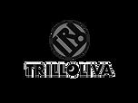 trilloliva-1-1.png