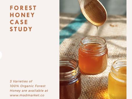 Forest honey student's work