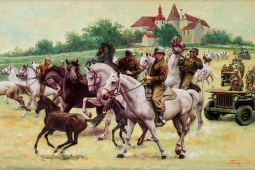 RESCUING THE LIPIZZANERS