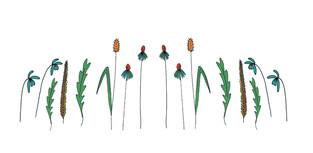 Digital Flowers