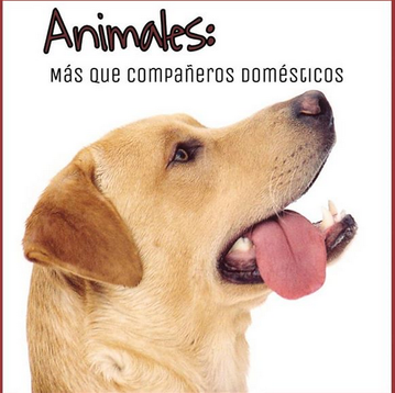 Animales: Compañeros domésticos y terapéuticos