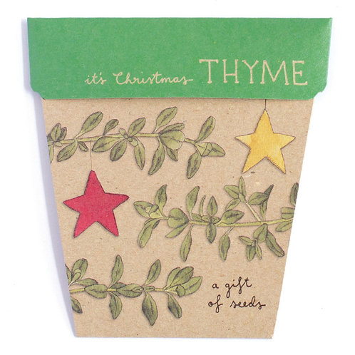 It's Christmas Thyme Seed Pack