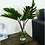Thumbnail: Greenery - perfect for putting throughout the house